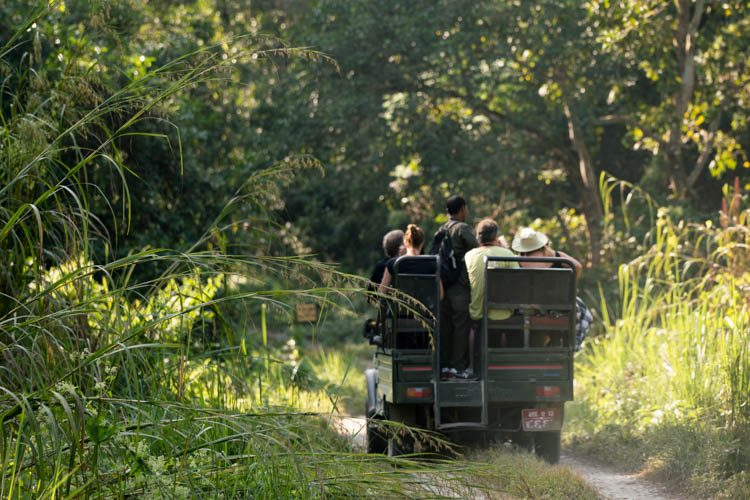 2 Night 3 Days Chitwan Jungle Safari