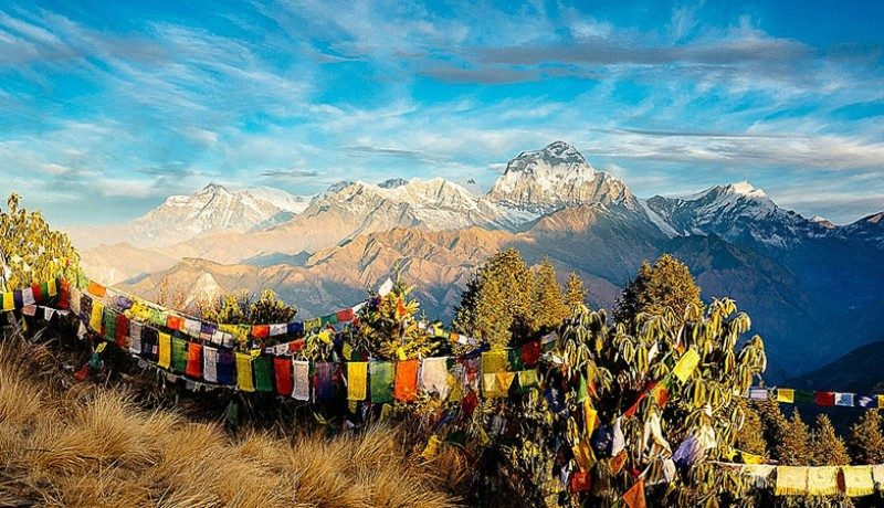 Luxury Annapurna Poonhill Trek and Chitwan Tour