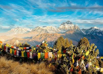 Ghorepani Poon hill trek with Chitwan Jungle safari